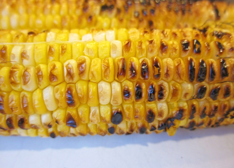 minnesota corn