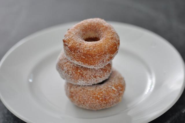 bogart loves doughnuts